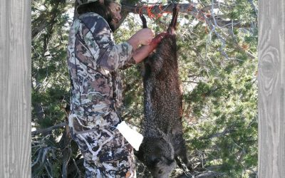 Episode 81 DJ Zor Bowhunting Javelina and Coues Deer